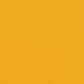 11_żółty